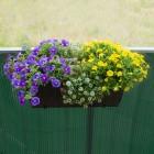 Podgląd: Płotek ogrodowy PVC Premium, szer. listwy 17 mm, Promocja