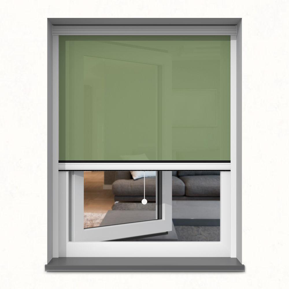 Roleta okienna screen, W kasecie, Na wymiar, Paproć