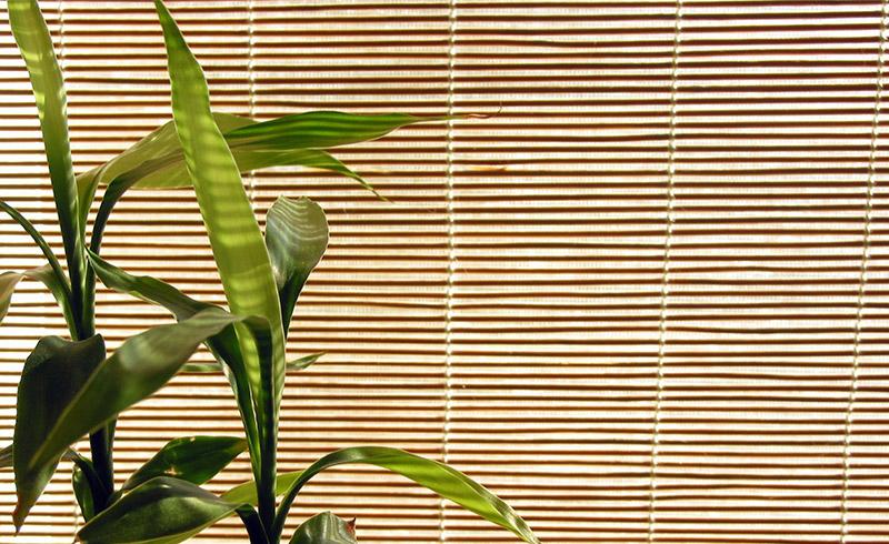 store en bambou type bateau stores bambou stores int rieurs domondo. Black Bedroom Furniture Sets. Home Design Ideas
